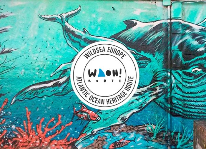 Creación da Marca de Mergullo na Costa Atlántica