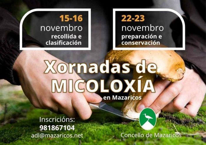 micologia mazaricos