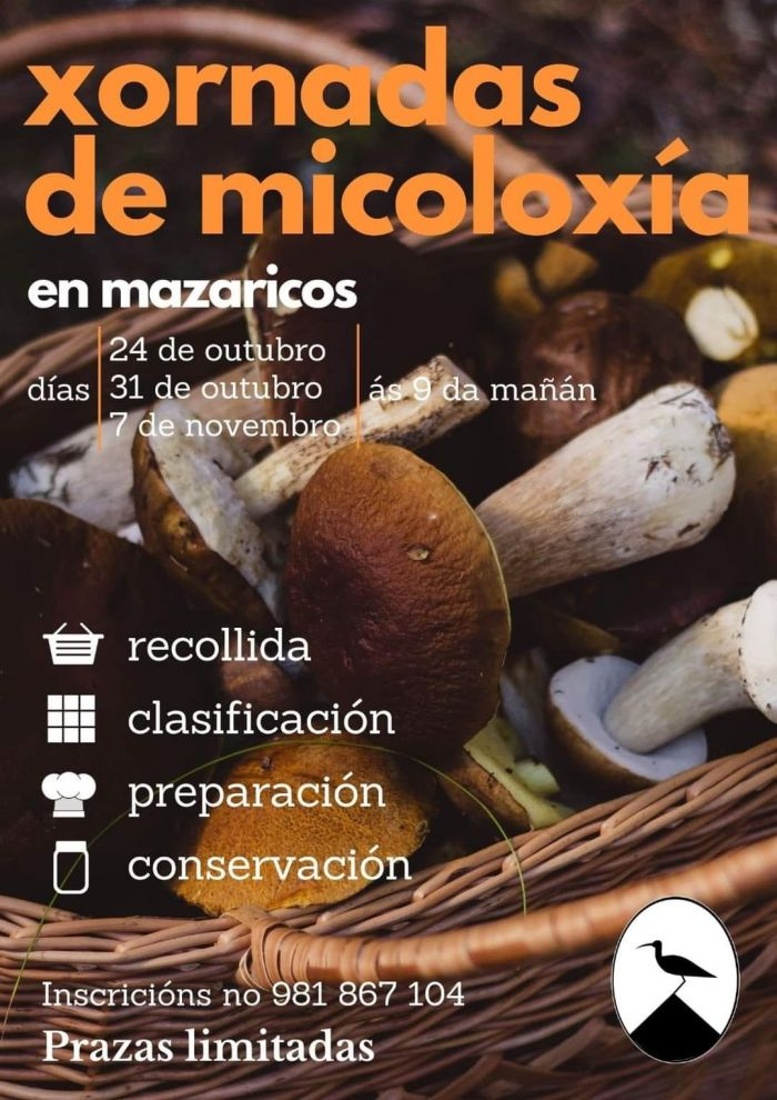 micoloxia