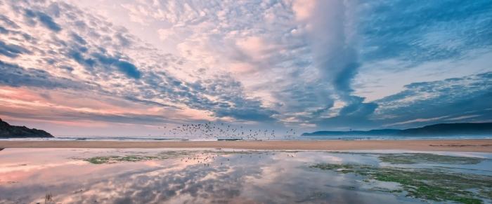 Birds Beach - Fisterra