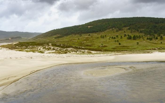 Ruta de aves campos de Nemiña e ría de Lires