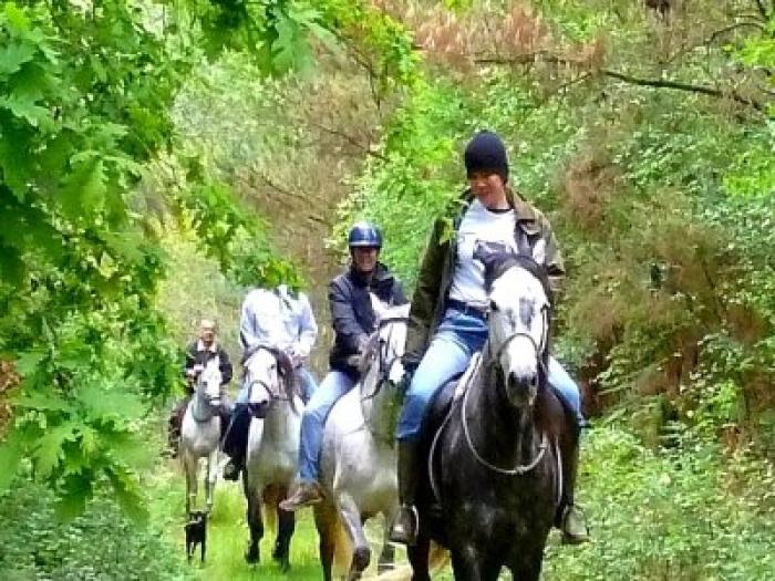 Rutas a cabalo
